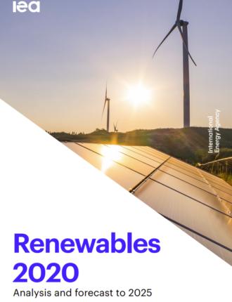 Renewables 2020 PDF